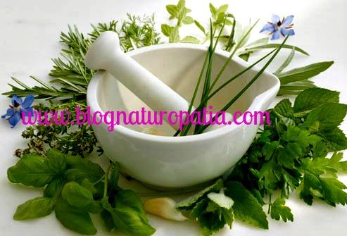 Disintossicarsi e dimagrire mangiando sano è possibile www.blognaturopatia.com